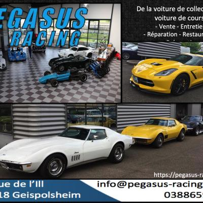 PEGASUS RACING 2019
