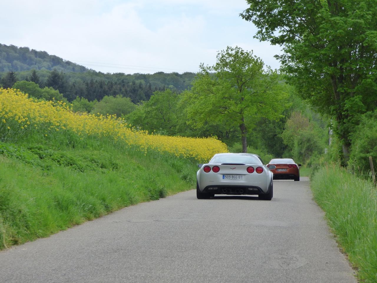 Alsace 2016 35