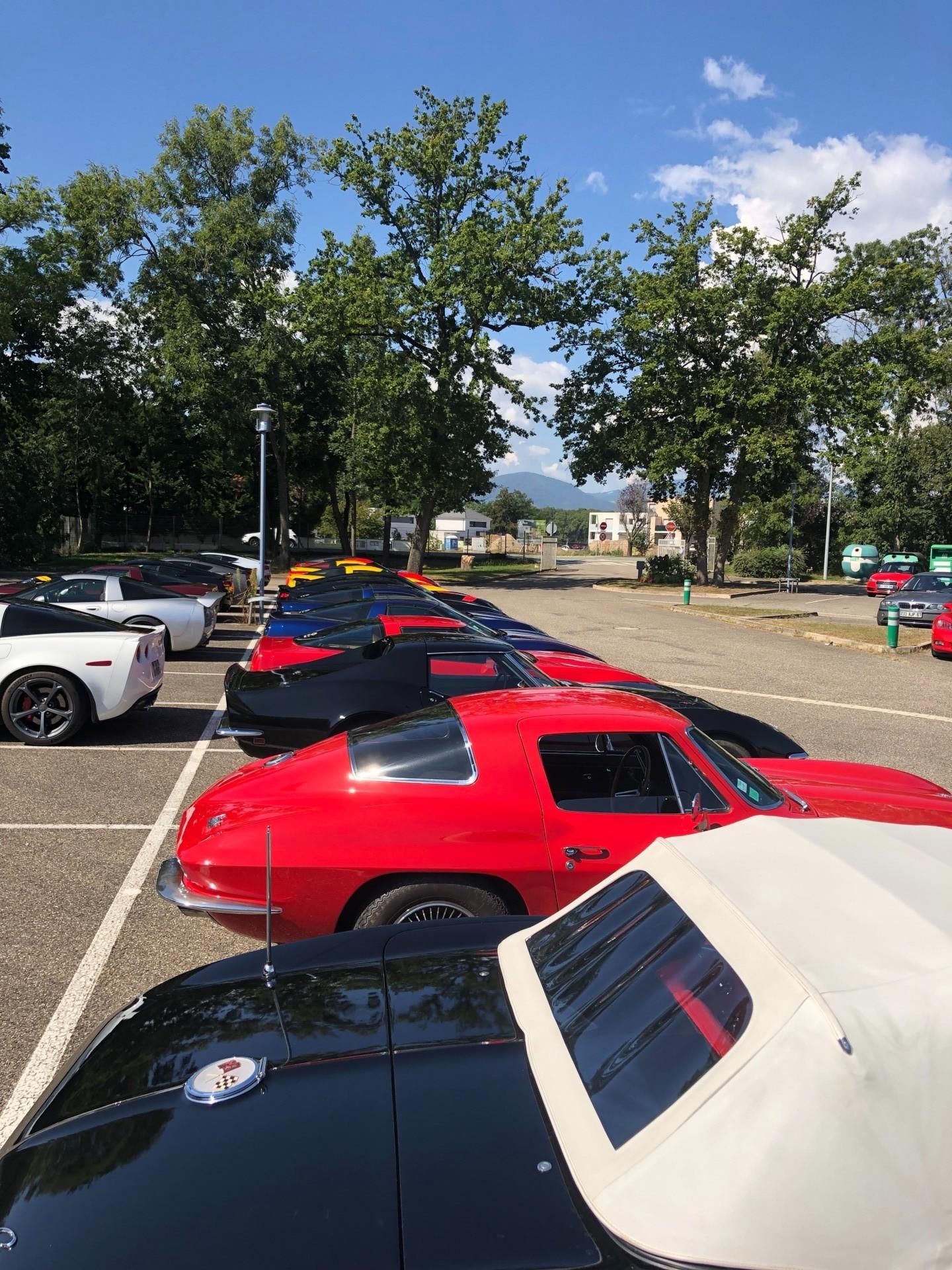 Corvette day 40